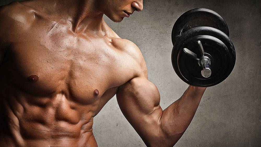 Products and menus for fast mass gain for ectomorph