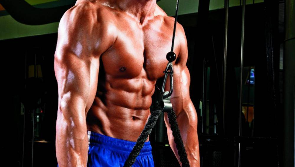 The correct set of muscle mass - 10 common mistakes