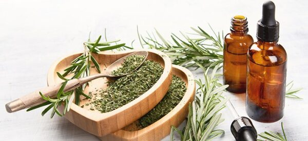 essential-oil-of-rosemary