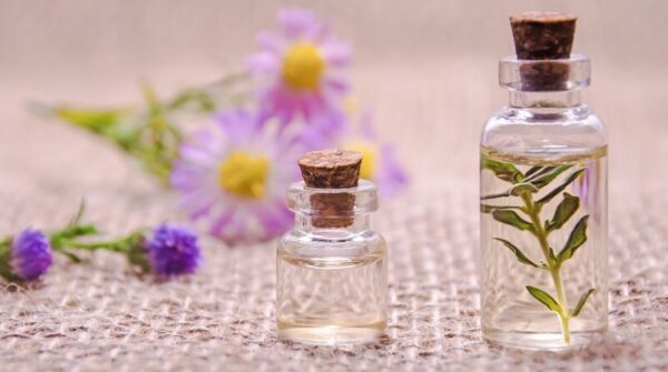 Rosemary: therapeutic and beneficial properties