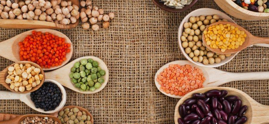 List of Foods - Major Sources of Vegetable Protein