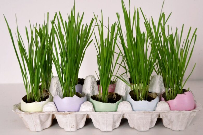 Easter-table-decoration-ideas (1)