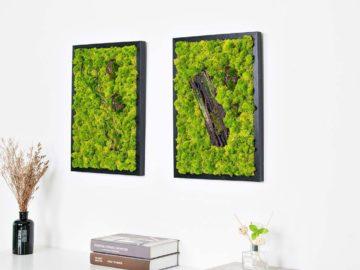 quadri-vegetali 11